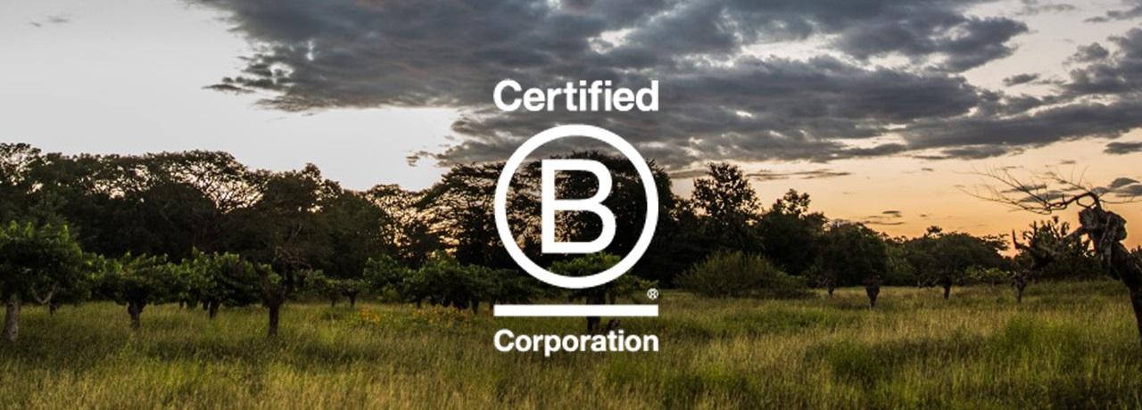 Valrhona est certifiée B Corp