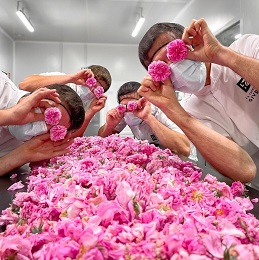 glace petale de rose fabrique givree