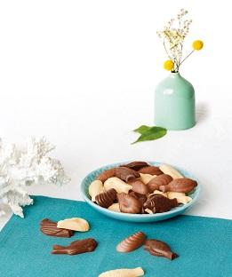 Créer et réussir ses chocolats de pâques